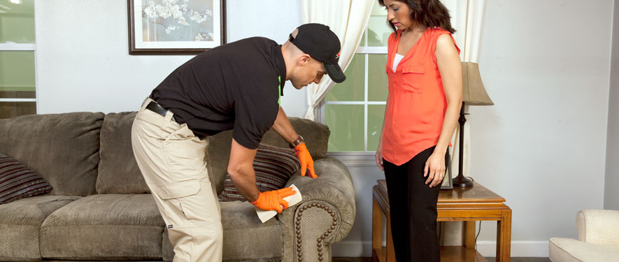 Rockford, IL carpet upholstery cleaning