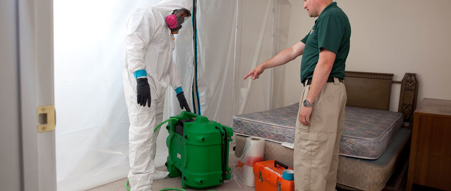 Rockford, IL mold removal process